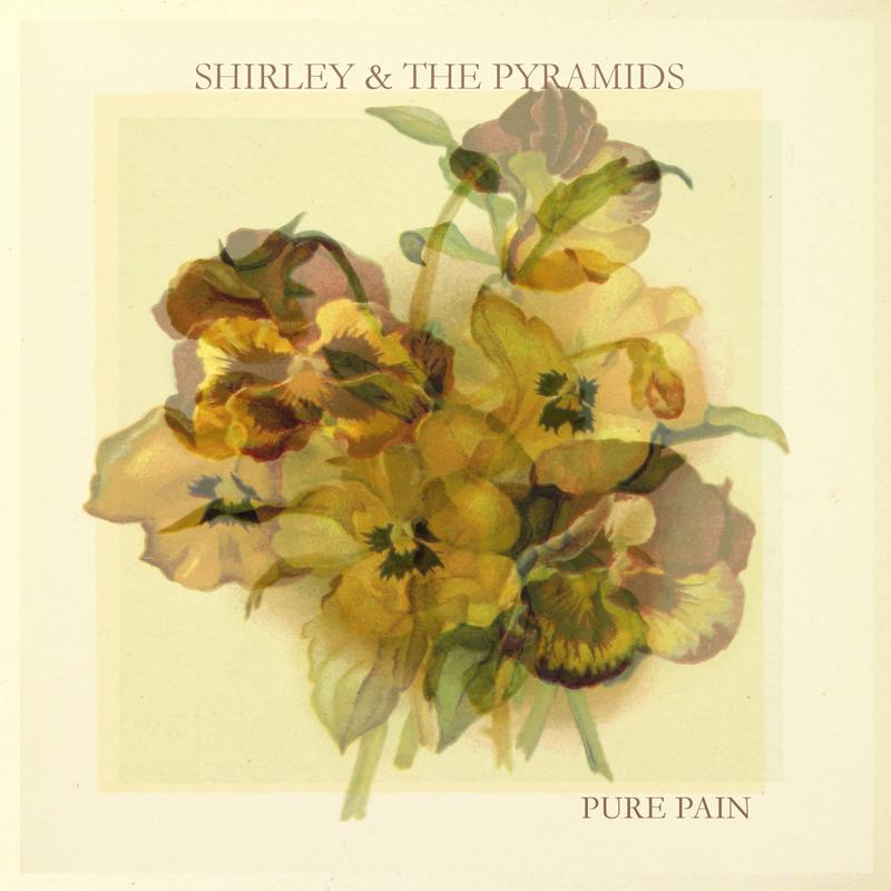 Pure Pain album cover